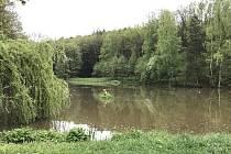 Rybník Jarval