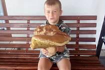 Malý Tomášek se svým houbařským úlovkem.