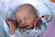 Na Štědrý večer 24. 12. 2018 v 19.35 h se mamince Pavle Lahodné narodila Ella Šatná. Prvorozenou holčičku vážící 2,94 kg si odvezla domů na Borek.