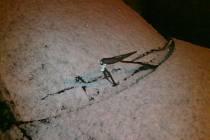 Poničené stěrače na vozidle před Pizzerií Fresh v páteční noci.