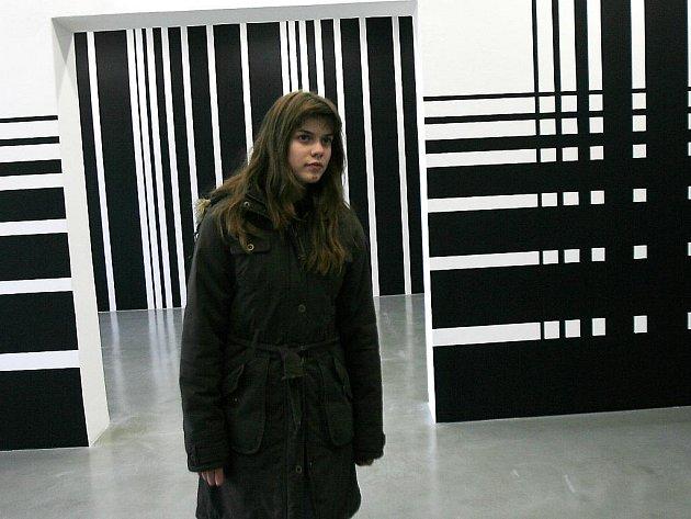 Budějovičtí radní chtějí zrušit galerii Dům umění. Na snímku výstava Liama Gillicka.