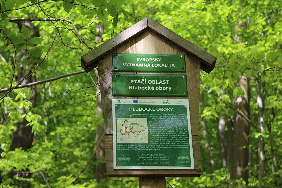 Lesy na březích této části Vltavy jsou cennou přírodní lokalitou.