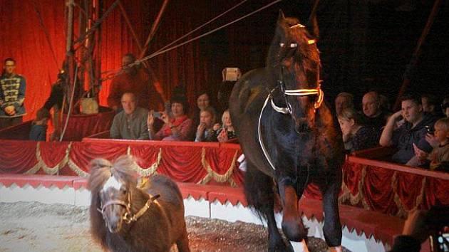 Ilustrační foto z cirkusu v Pasově.