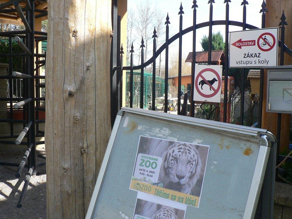 Zákazníky přivítají znovu od 12. dubna 2021 papírnictví, do škol smí polovina dětí na 1. stupeň a s omezenou kapacitou mohou otevřít i zoologické zahrady (na snímku ZOO Dvorec).