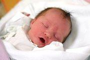 Pod dohledem čtyřleté Dorotky a dvouletého Tomáška vyrůstá v Březnici Anastázie Piklová. Maminka Jana Piklová ji porodila 2. 1. 2019 v 9.43 h, děvče vážilo 3,24 kg.