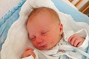 Lenka Zemanová přivedla 15. 1. 2018 na svět v českobudějovické nemocnici Dominika Loušu. Narodil se 15. 1. 2018 v 10.12 h, vážil 3,43 kilogramu. Dominik vyroste v Českých Budějovicích.