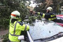 Popadané stromy patří během bouřek mezi nejčastější příčiny výjezdů hasičů.