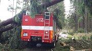 Vítr neušetřil ani hasiče, spadlý strom poškodil cisternu.