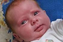 Lenka Hauserová nám poslala fotku své dcerky Terezie Hauserové narozené 16.05.2012 ve 12.44 h v Českých Budějovicích. Doma v Nákří bude vyrůstat spolu se čtyřletým bráškou Jakubem. Spoustu legrace jistě zažije i se dvěma nevlastními sestrami a dvěma nevla