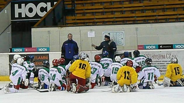 Soustředění krajského výběru hráčů ročníku 2002 vedli v Táboře trenéři Arpád Györi z HC Tábor a Roman Fousek z Českobudějovických Lvů.