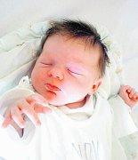 Neobvyklý, ale krásný, dárek pod stromeček dostanou osmiletý Radímek a čtyřletá Andrejka – bude jím sestřička Sabina Hevrdejsová. Ta přišla na svět 20.12.2010 ve 14.20 hodin s porodní váhou 3,32 kg. Rodina bydlí v Českých Budějovicích.