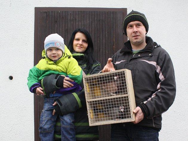 Nedělní výstava lákala chovatele holubů, slepic i králíků.