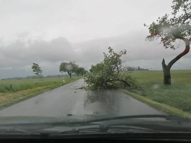 Spadlý strom přes cestu z Jindřichova Hradce na Políkno.