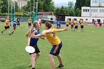 V Českých Budějovicích se konalo 3. a 4. 6. 2017 historicky první mistrovství juniorů ČR ve frisbee pod širým nebem.