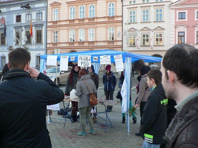 Na náměstí v Českých Budějovicích se uskutečnila protestní akce.