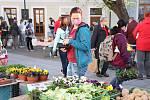 První farmářský trh na Piaristickém náměstí.