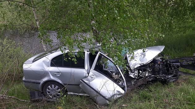 Řidič ujel 460 metrů po louce, než narazil do stromu.