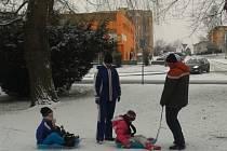Sníh na Českobudějovicku v sobotu 25. ledna 2014.