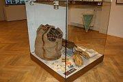 V Českých Budějovicích je do 30. dubna přístupná v Jihočeském muzeu výstava o hokeji ve městě.