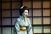 Oblíbenou rolí Annamarie Popescu je Suzuki v opeře Madame Butterfly.