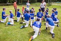 Baseballu se pod hlubockým zámkem daří, klub letos oslaví dvacátiny.lví .