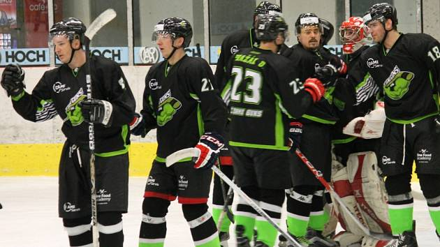 Hokejisté Dami Guns.
