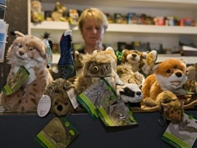 Plyšáky v informačním středisku na Kvildě prodává vedoucí střediska Dana Zývalová. Foto: