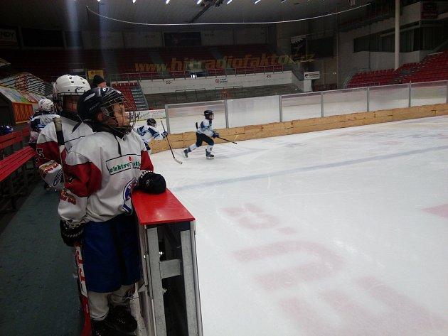 Hokejový Slim Cup osmiletých nadějí