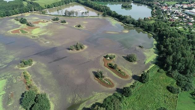 Vrbenské rybníky na okraji Českých Budějovic jsou součástí přírodní rezervace. Domin a Bažinu čeká regenerace.