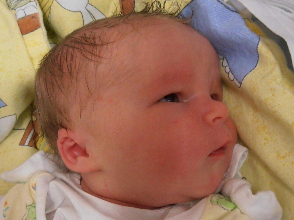 Dne 19.6.2012 v 8 hodin a 11 minut se v českobudějovické porodnici narodila Eliška Paulová. 3,45 kg vážící Eliška bude vyrůstat společně s bezmála pětiletou sestřičkou Markétkou v Suchdole nad Lužnicí.
