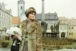 Písecké Alšovo náměstí s morovým sousoším a vychovatelkou. Vzadu se tyčí věž děkanského kostela Narození Panny Marie.