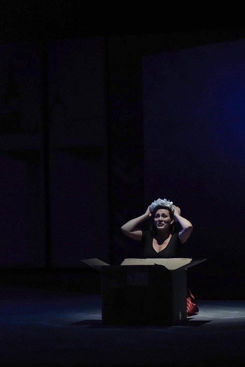 Sopranistku Janu Šrejmu Kačírkovou ocenili diváci jako svou nejoblíbenější umělkyni v anketě Jihočeská Thálie. Zpěvačka z Vidova zde účinkuje v opeře Prodaná nevěsta v hlavní roli Mařenky.