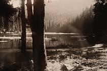 Egon Schiele Art Centrum v Českém Krumlově představuje Fotoateliér Seidel. Expozice zahrnuje na 250 fotografií, mnohé z nich jsou vystaveny poprvé.