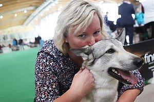 Mezinárodní dvoudenní výstava psů