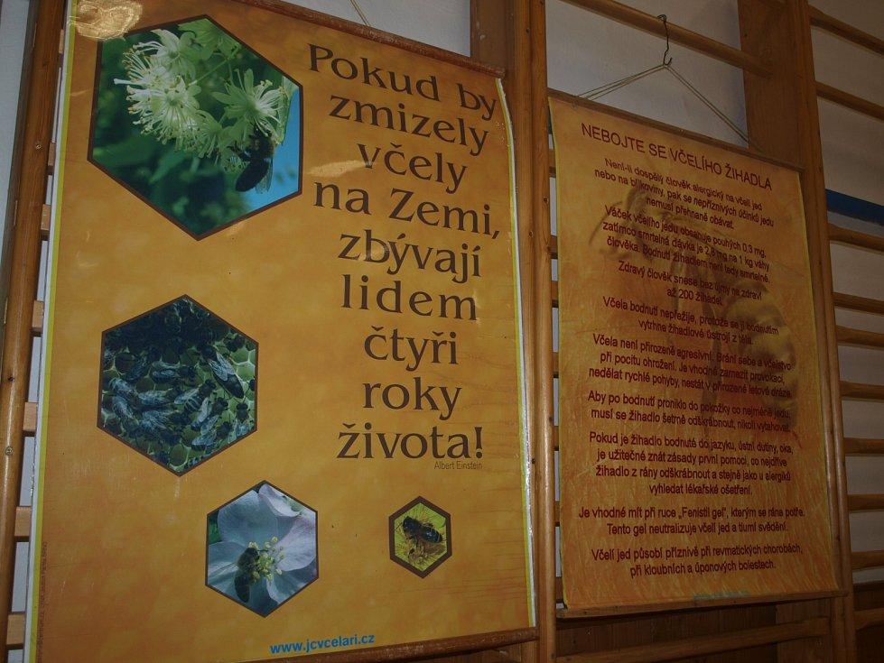 Život včel a různé zajímavosti z přírody poznali návštěvníci sobotního Včelkohraní, které se uskutečnilo v kulturním domě v Borku.
