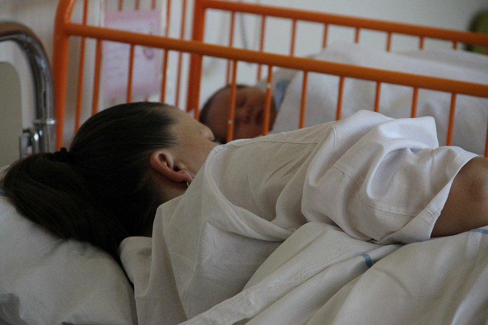 Ilustrační foto těhotenství a porod.