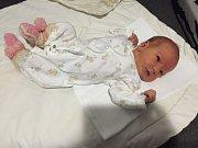Nela Kudriová z Českých Budějovic se narodila 13. 3. 2016 ve 3 hodiny a 24 minut. Rodiči 3,75 kg vážící holčičky jsou Dita Valencínová a Petr Kudri.
