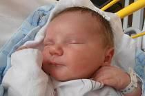 Úctyhodných 4,74 kg vážil po svém příchodu na svět Tomáš Krédl. Chlapeček se narodil přesně v 11 hodin a 38 minut v neděli 16.10.2011. Svoje dětství bude prožívat v Českých Budějovicích.