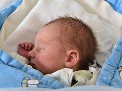 Hana a Michal Heřmanovi přivítali nového člena rodiny. Dominik Heřman se narodil 17. 5. 2016 v 10.32 hodin. Na brášku, který vážil 2,95 kg, čekala doma v Ledenicích dvouletá sestra Gábina.