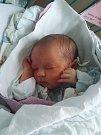 Nikol Piherová se narodila 29. 11. 2017 v 9.39 hodin. Nikol, která po porodu vážila 2,65 kg, dělá radost mamince Šárce Kožíškové a tatínkovi Pavlu Piherovi. Domovem šťastné rodiny jsou Litvínovice. Nikol je zatím jedináčkem.