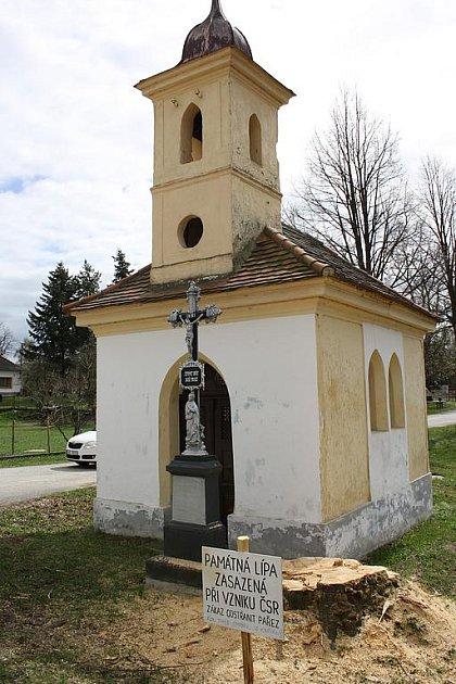 Město Lišov a krajský úřad se nemohou dohodnout, kdo nechal porazit památnou lípu ve Vlkovicích.