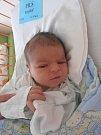 Novým občánkem Markvartic na Českokrumlovsku se v úterý 5. 4. 2016 stal Kryštof Pils. Na svět se probojoval s váhou 3,70 kg přesně ve 12 hodin a 57 minut. Z prvorozeného potomka se radují manželé Jan a Marie Pilsovi.