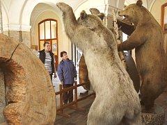 Bezmála 20 000 exponátů, z nichž je zhruba deset procent na prohlídkových trasách, má ve svých depozitářích Muzeum lesnictví, myslivosti a rybářství v zámku Ohrada v Hluboké nad Vltavou.