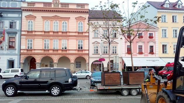 Před zimou byly odvezeny stromy z českobudějovického náměstí Přemysla Otakara II.