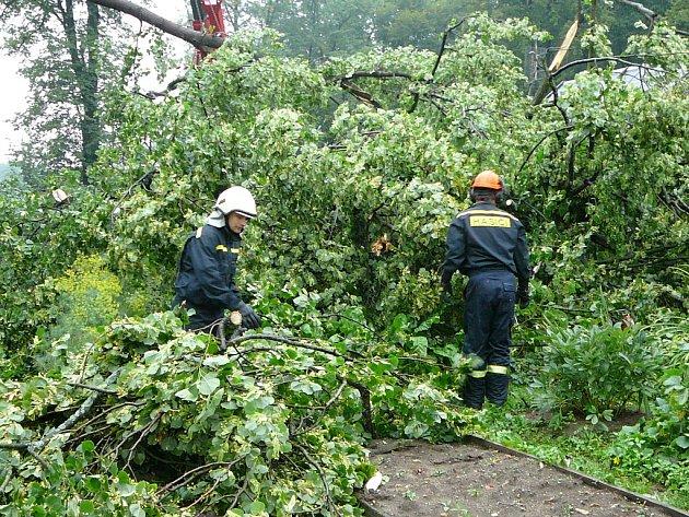 Profesionální hasiči v pátek ráno odstraňovali padlý strom v Jindřichově Hradci na Lišném dvoře, který vyvrátila večerní bouře.