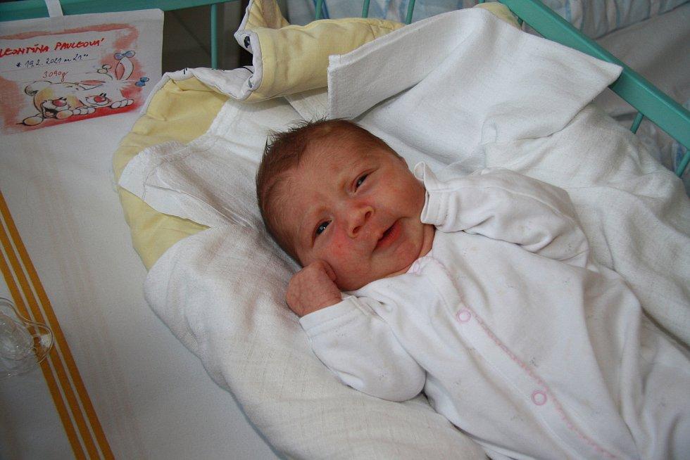 Leontýna Pauleová, Žernovice. Narodila se v pátek 19. února ve 21 hodin v prachatické porodnici. Vážila 3090 gramů. Má brášku Ládíka (2,5 roku). Rodiče: Markéta a Ladislav Pauleovi.