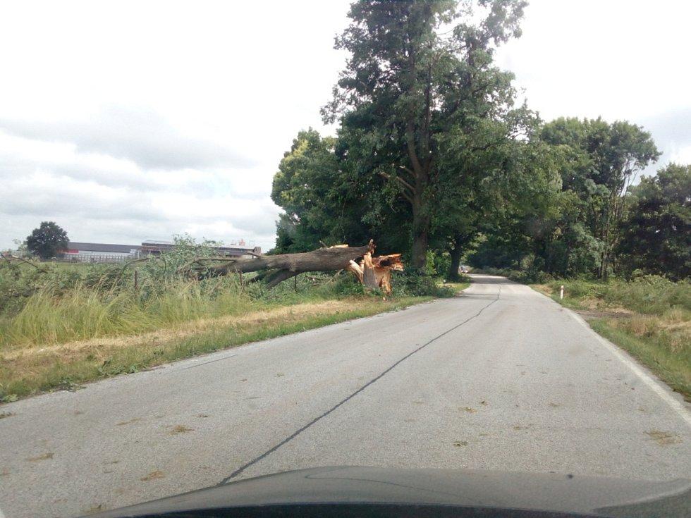 V noci na čtvrtek 24. 6. 2021 způsobila velké škody na Českobudějovicku další ze série bouřek. Na snímku silnice mezi Dřítní a Kočínem.