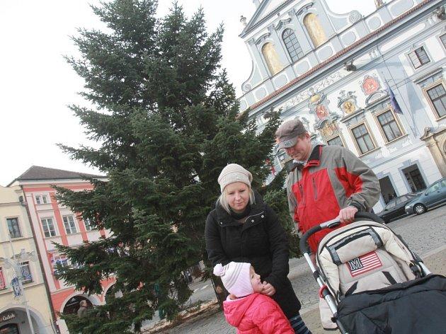 Vánoční strom na českobudějovickém náměstí.