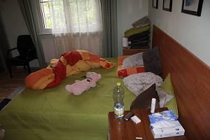 """V obou pronajatých objektech současně bydlelo několik dívek, které ženě za pronájem pokoje platily částku 1 500 korun za každý den, kdy v bytě, resp. domě """"pracovaly""""."""