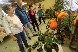 Výstava plodů podzimu v moštárně v Nových Hodějovicích